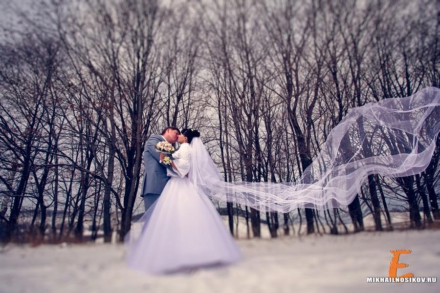 свадьба зимой где фотографироваться в спб именно нет