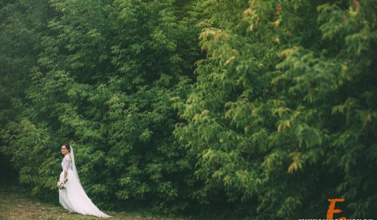 Свадьбы — отчетное слайд-шоу за 2014 год
