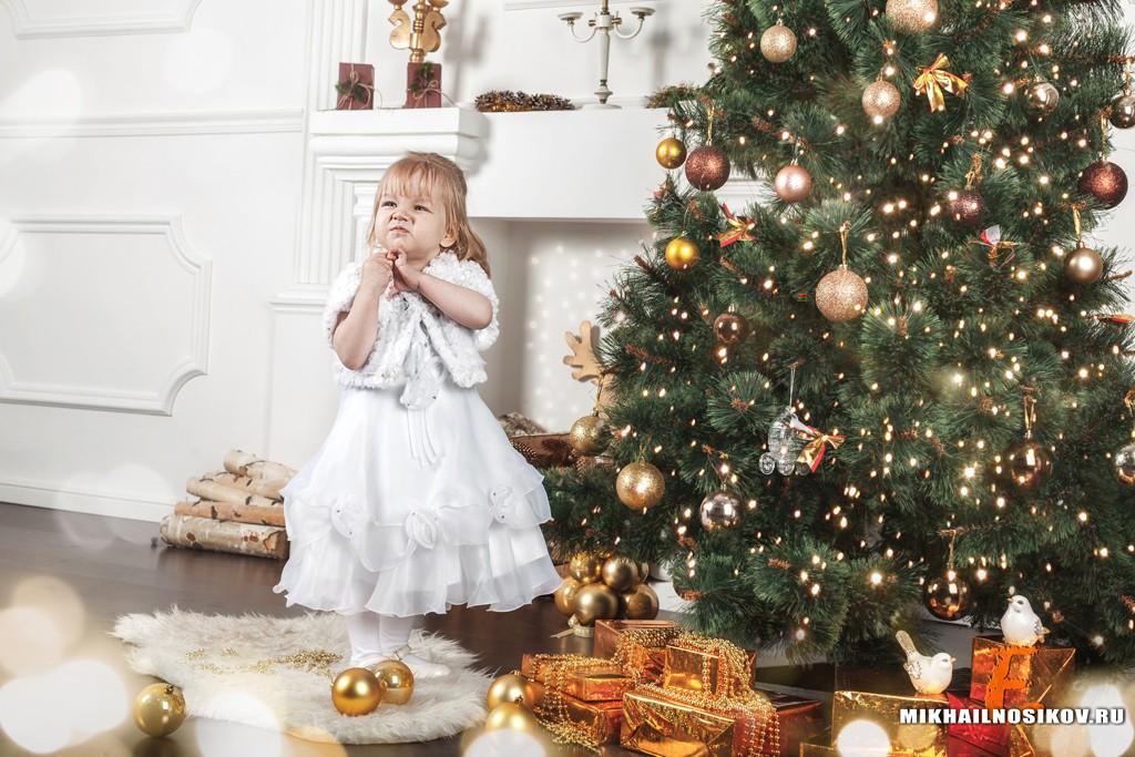 Новогодняя фотосессия 2017. Советы участникам фотопроекта