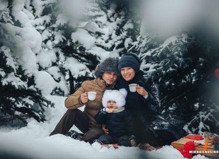 Фотосессия зимой в лесу