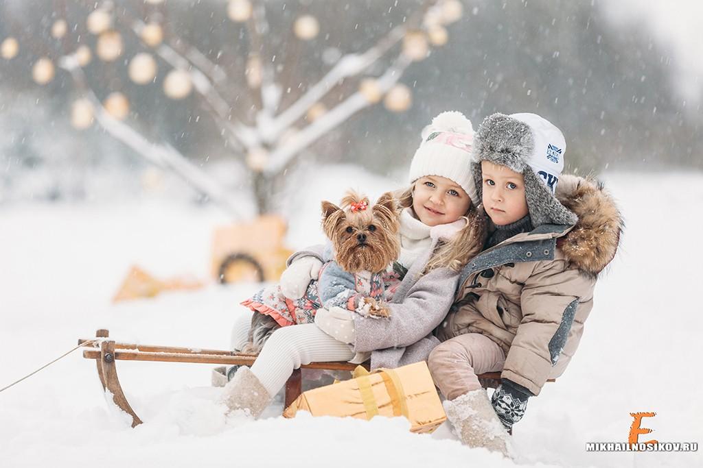 Идеи зимней семейной фотосессии